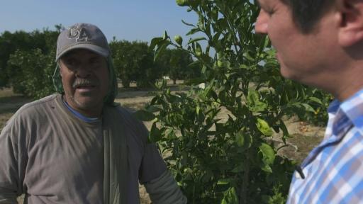 Guillermo Galdos and farmer