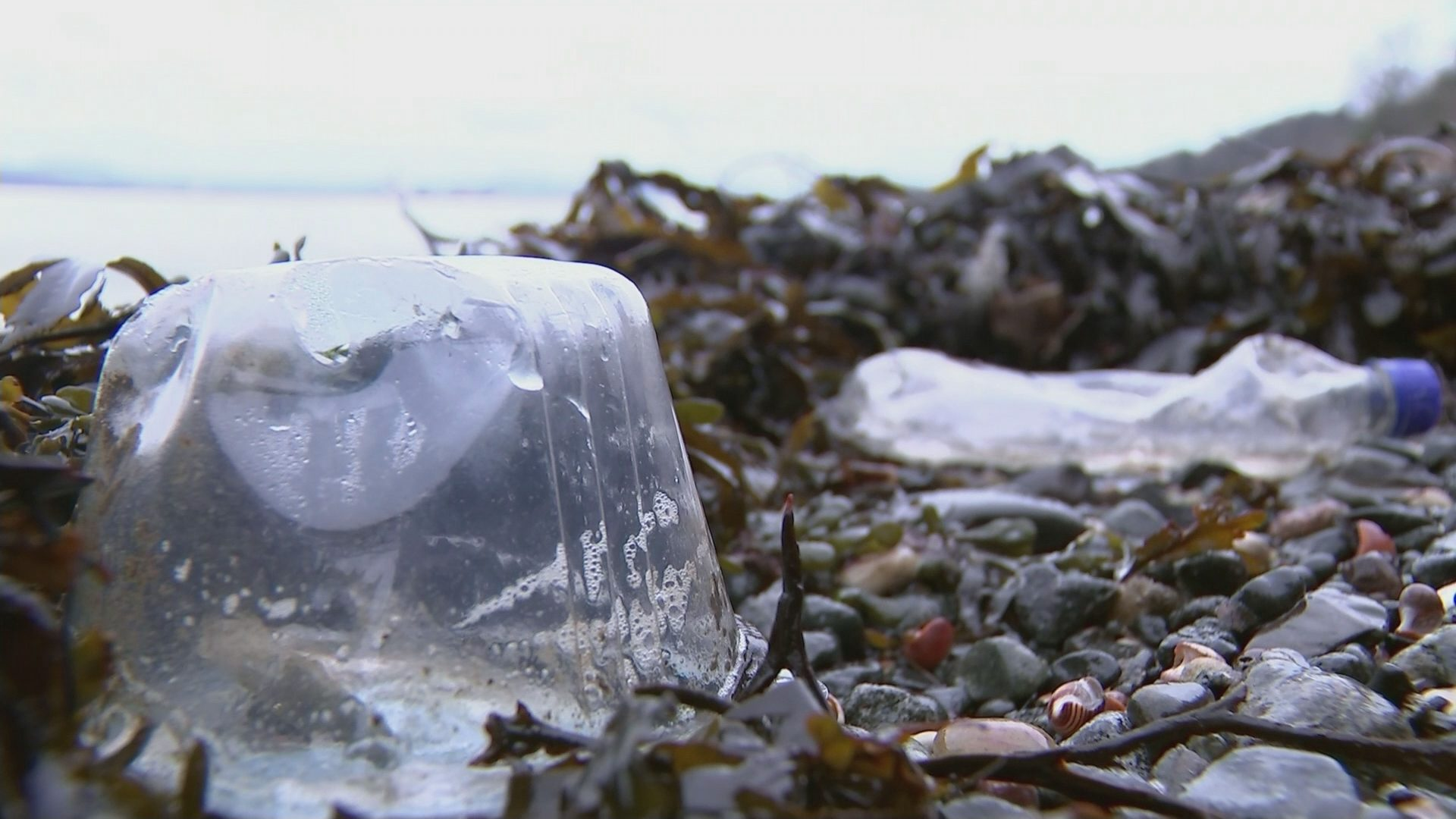 Takeaway plastics could be taxed – Channel 4 News